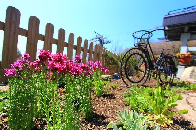 庭に設置された木製柵のイメージ画像